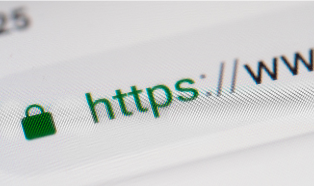 Bezpieczeństwo domeny